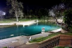 Barton Springs Pool At Night